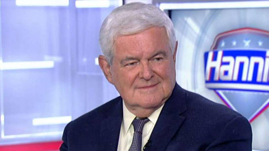 Newt Gingrich: Midterm election is about 'two Americas'