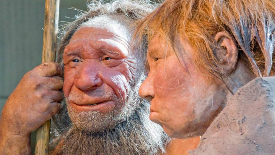Bones reveal Neanderthal child was eaten by large bird