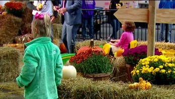 'Fox & Friends' holds fall festival on the square
