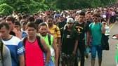 Dhillon: Migrant caravan is a foreign invasion