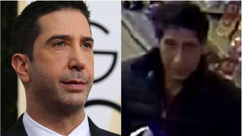 David Schwimmer lookalike arrested on suspicion of theft, police say