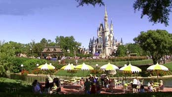 Report: Disney fans spread family ashes at theme parks