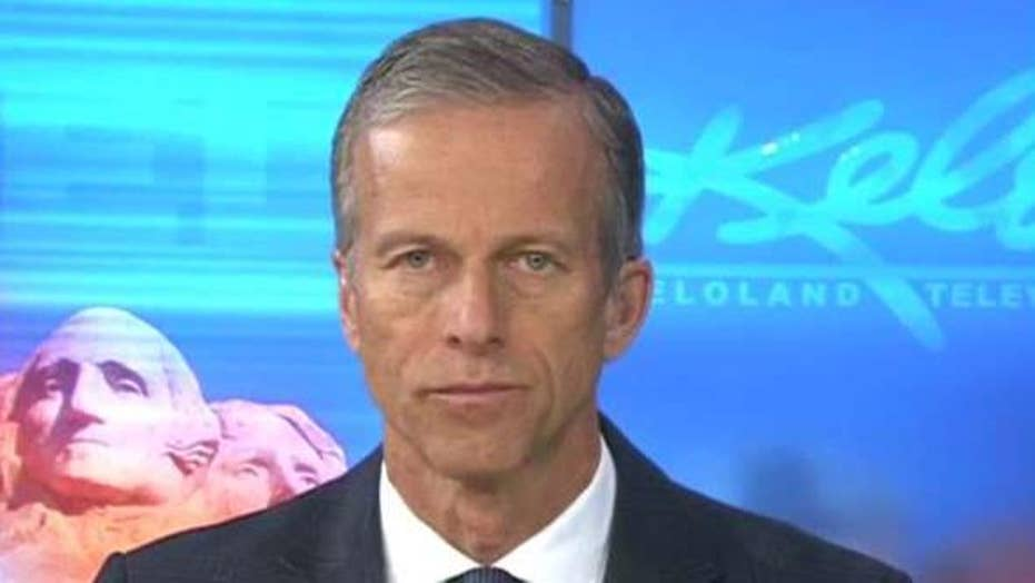 Thune on Trump's plans to end birthright citizenship | Fox ...