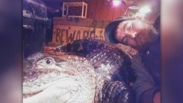 Missouri man mounts legal fight to get pet alligator back