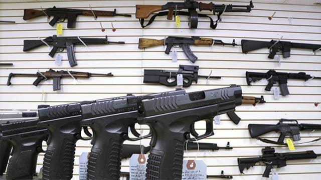 Liberal Democrats set their sights on gun control