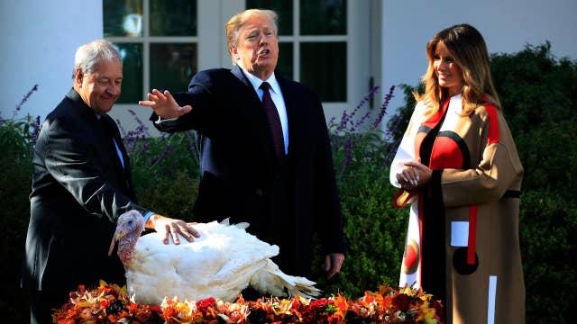 Trump pardons Thanksgiving turkeys Peas and Carrots