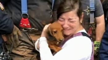 New Jersey dog saved after getting trapped in pipe: report