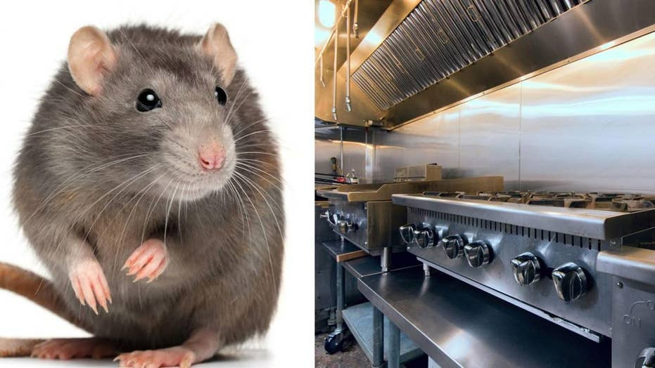 Burger restaurant closed after video of rat on grill goes viral
