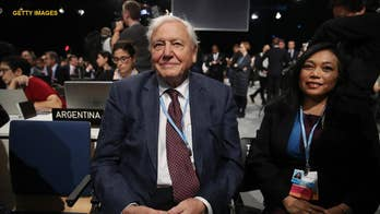 Sir David Attenborough predicts 'collapse of civilization' at UN summit