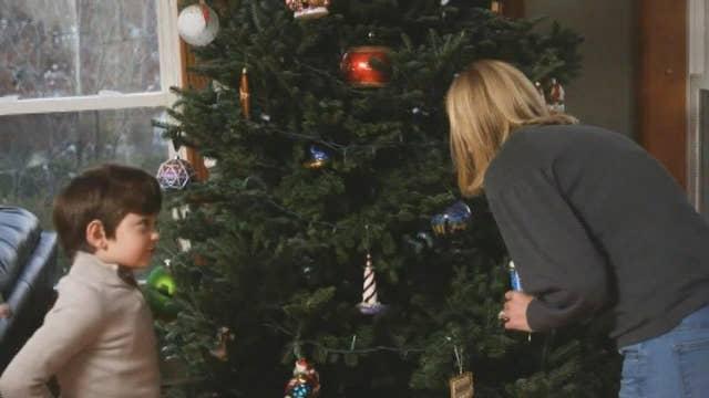 The great Christmas tree debate: real or fake?