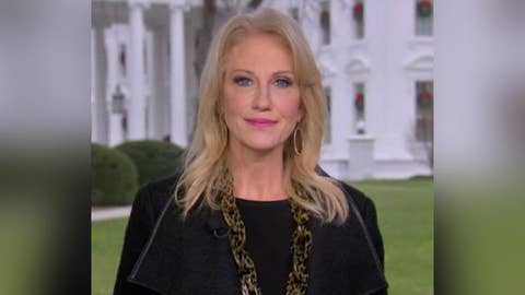 Kellyanne Conway weighs in on border wall battle