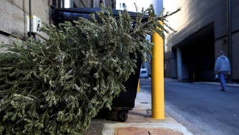 'Tis the season. . . to get rid of your Christmas tree. But how?