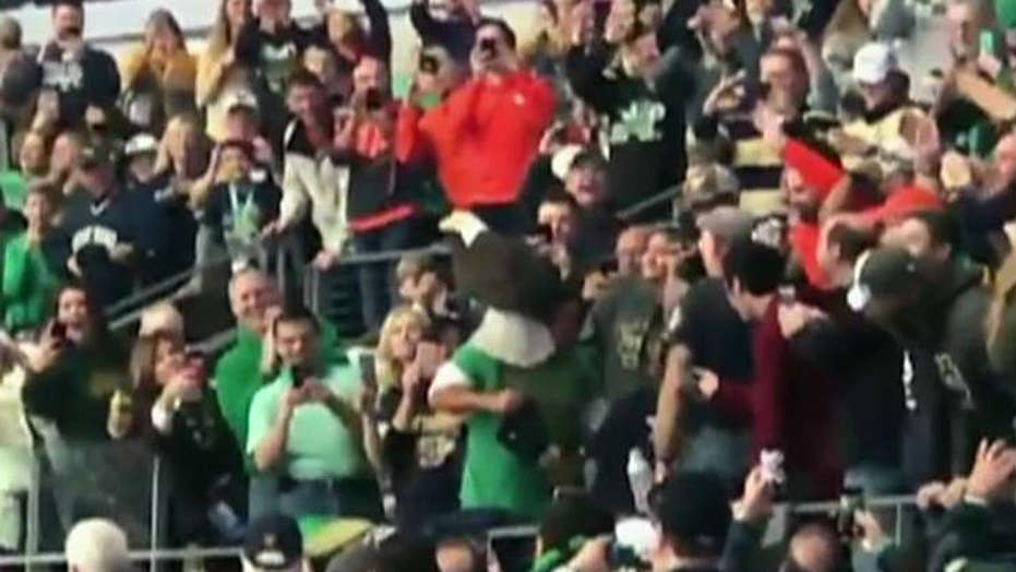 .Rogue bald eagle lands on fan during Saturday's Cotton Bowl