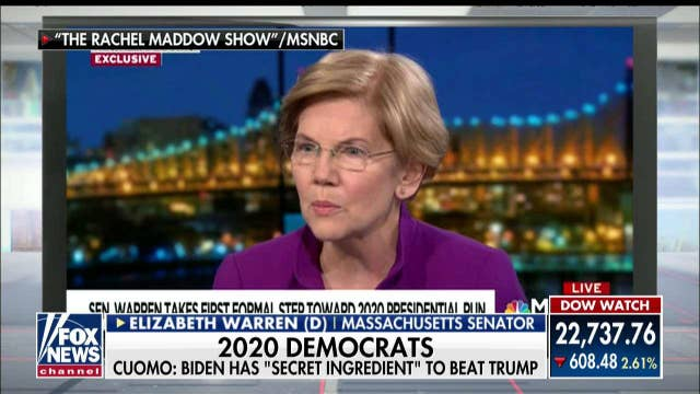 WSJ Asst. Editor on Warren in 2020: 'She Ended Her Possibility With the DNA Claim'