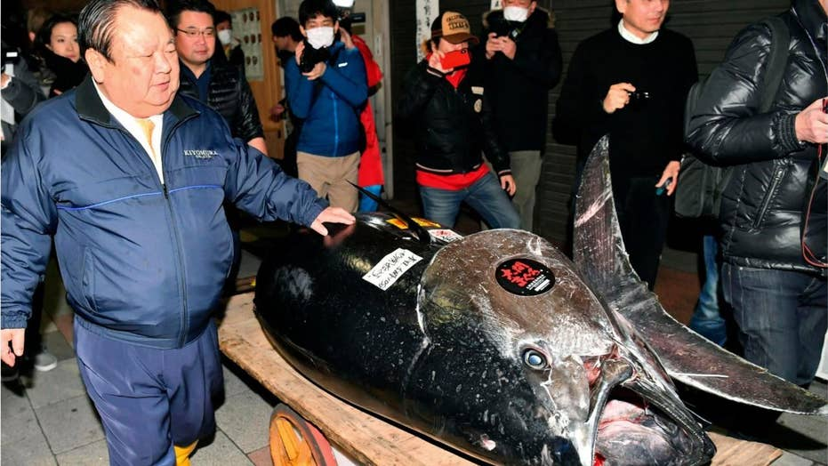 Japanese 'Tuna King' pays record $3M for prized Bluefin Tuna