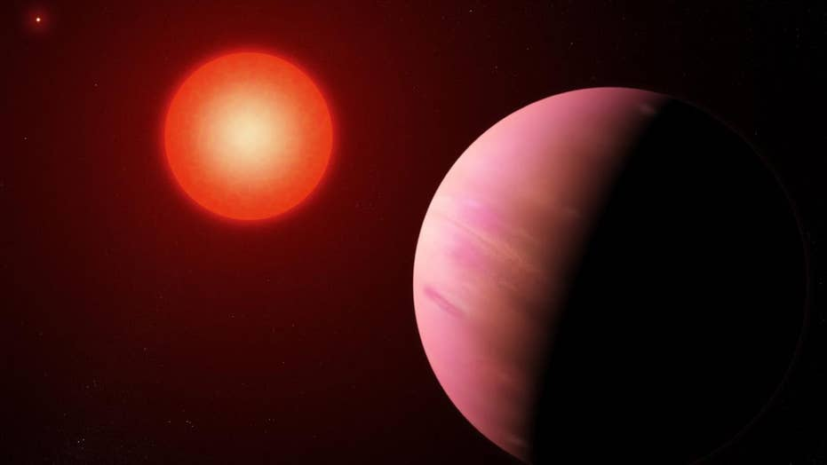 Distant, presumably habitable universe detected by citizen scientists