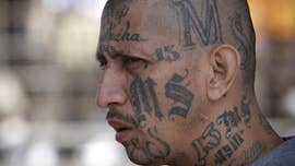 ICE agents fighting MS-13 in Long Island to remain near jail after eviction, officials said