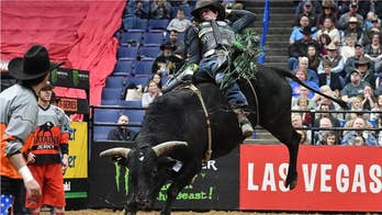 Professional bull rider, 25, dies after being injured at Colorado event