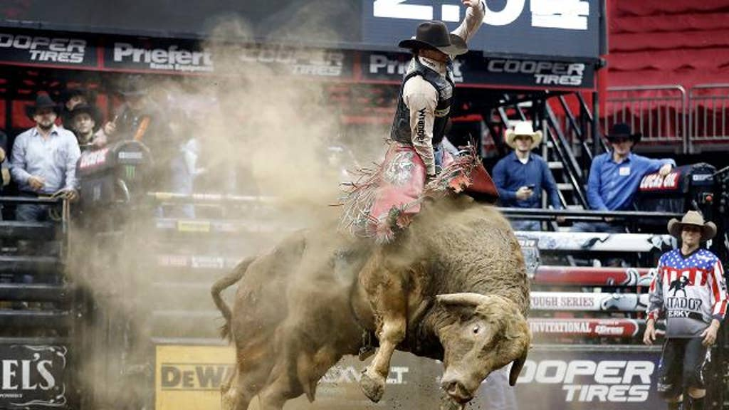 Bull that killed rider won't be pulled from tour, CEO says