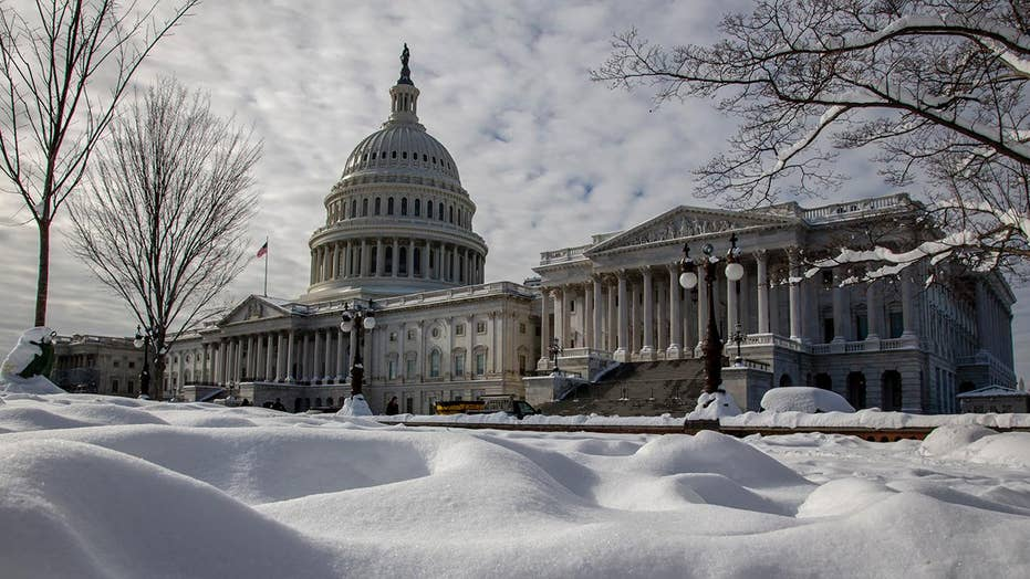 Will the partial government shutdown affect the 2020 election cycle?