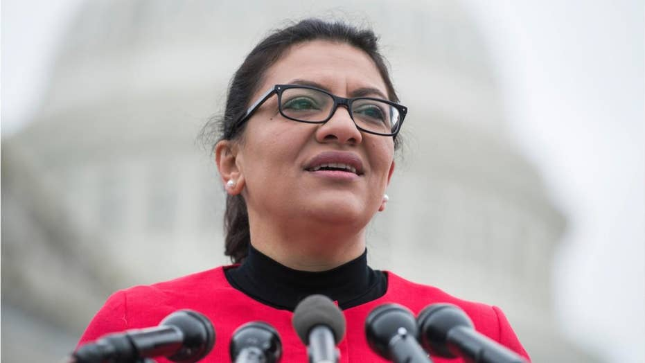Rashida Tlaib once complained sister was on no-fly list – now that she's in Congress, details on status are scarce