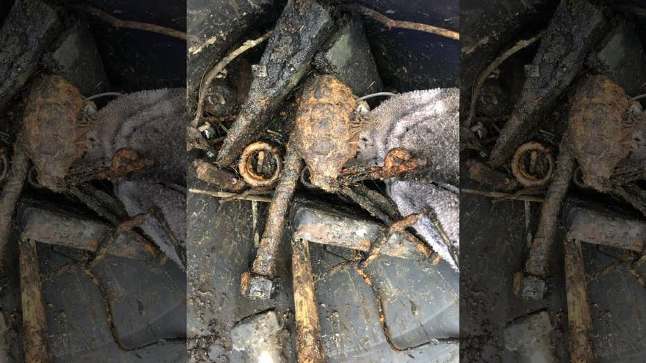 Man finds 'authentic WWII hand grenade'