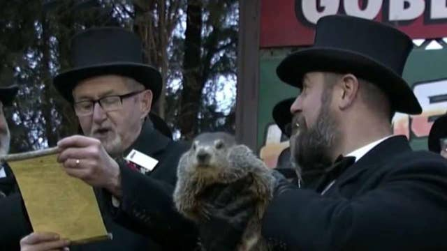 An early spring is right around the corner according to Punxsutawney Phil thumbnail