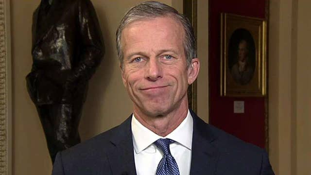 Sen. Thune: The economy is a 'really good story' for President Trump