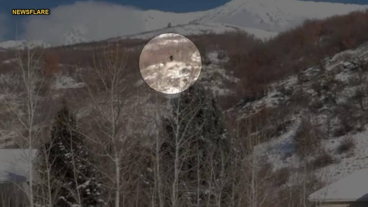 WATCH: Hunters claim 'Bigfoot' sighting in Utah mountains