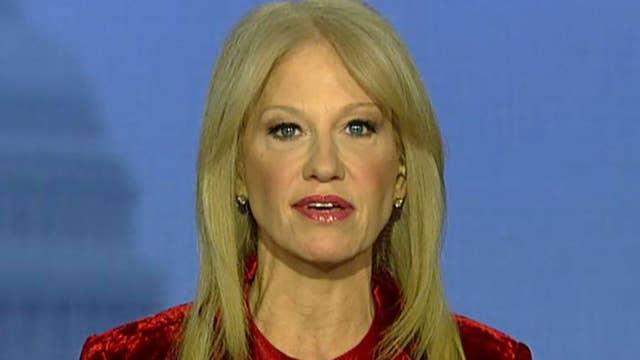 Kellyanne Conway slams 'bigmouth Democrats' seeking to defund ICE, says Democrats would own next shutdown