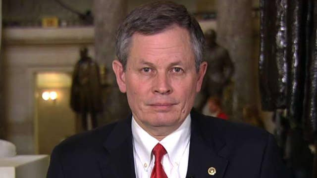 Sen. Steve Daines challenges fellow lawmakers to spend a night with Border Patrol thumbnail