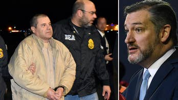 Sen. Ted Cruz: To secure our border, take these important and effective actions
