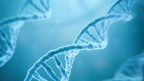 Man finally finds biological family thanks to DNA