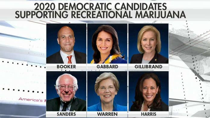 Democrats pushing to legalize recreational use of marijuana don't understand its true effects