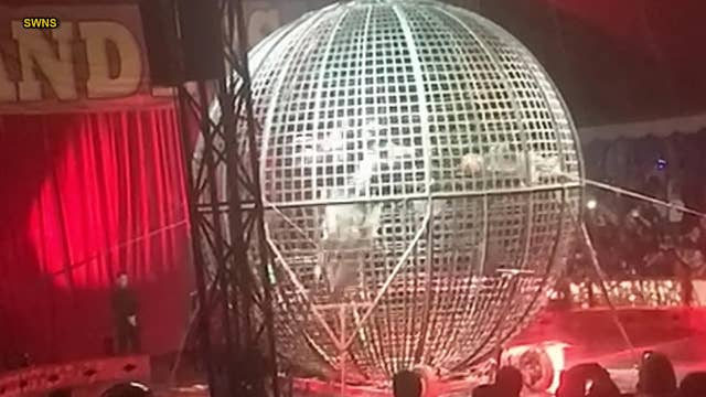 Circus performers crash during 'globe of death' motorcycle stunt
