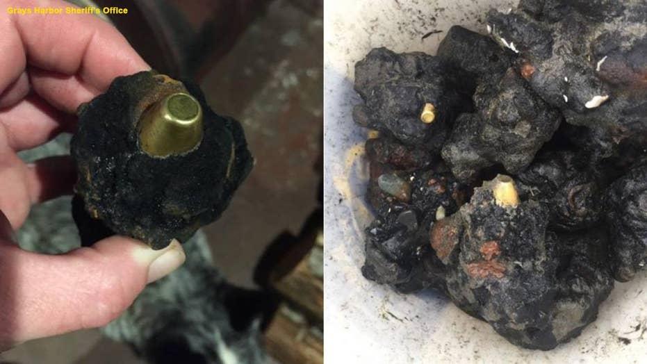 Highly explosive military rounds found on Washington beaches