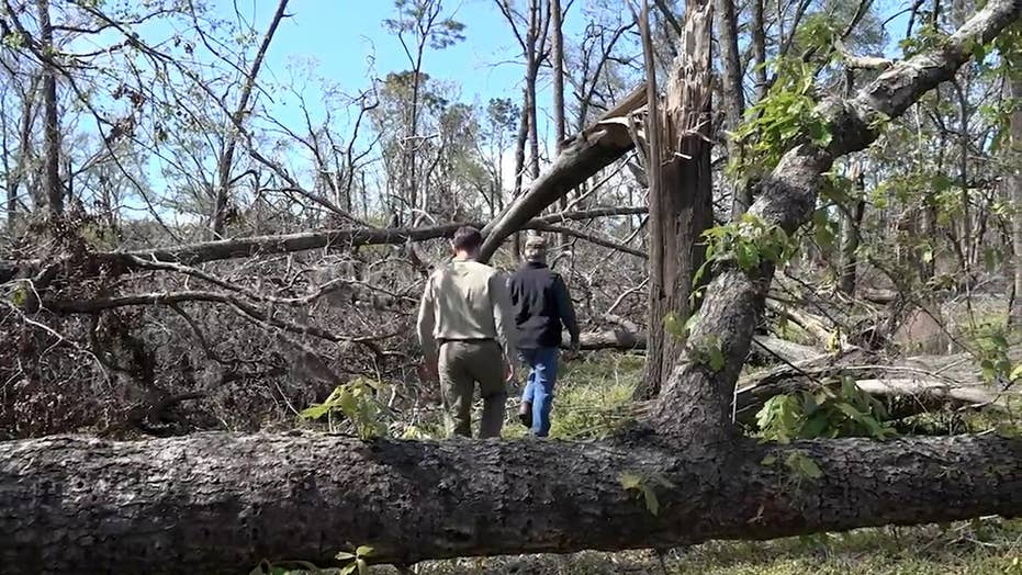 Hurricane Michael Recovery: Timber industry hit hard