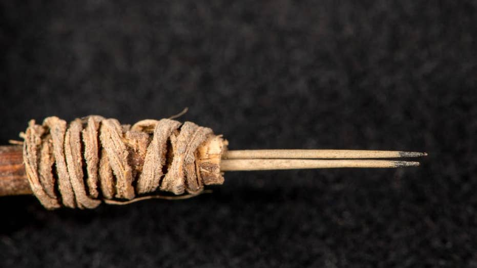 Ancient tattooing tool discovered in North America