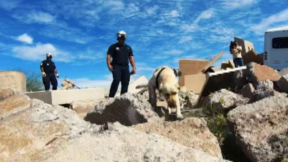 Inside look at training for FEMA search and rescue dogs