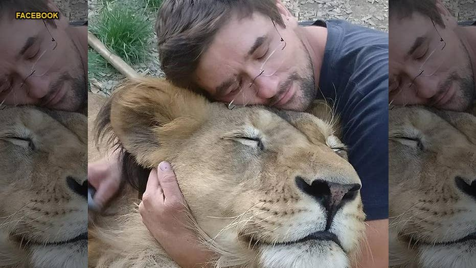 Man mauled to death by pet lion he kept in backyard