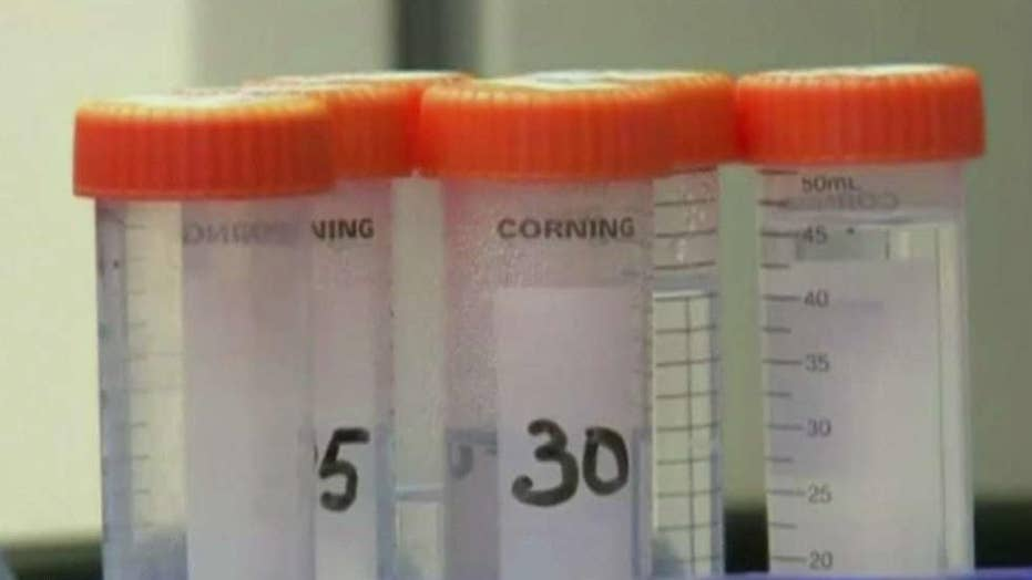 Doctors may have cured second man of HIV