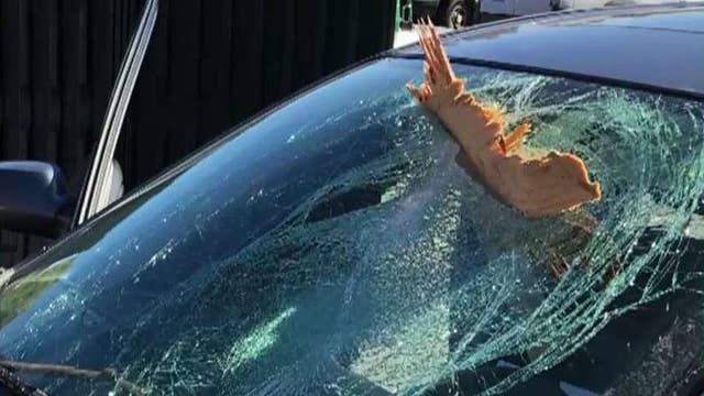Lucky driver unscathed after plywood smashes through windshield