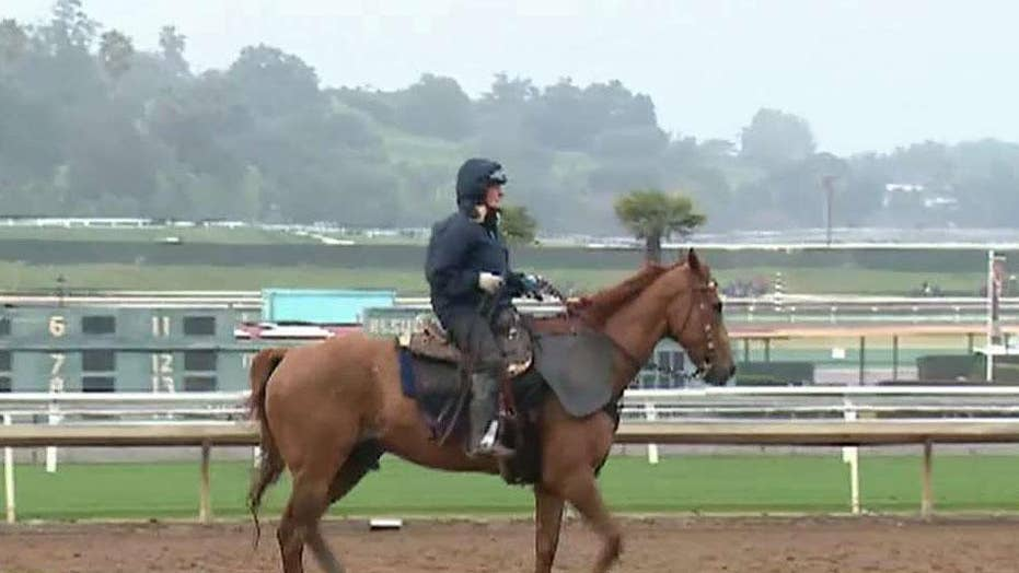 Santa Anita Park suspends racing indefinitely after 21st horse dies