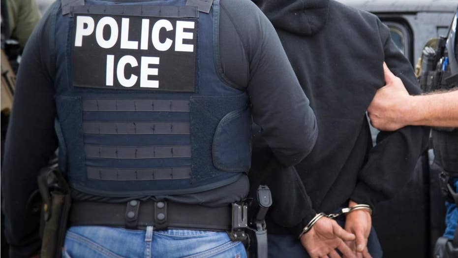 ICE makes more arrests at decoy university
