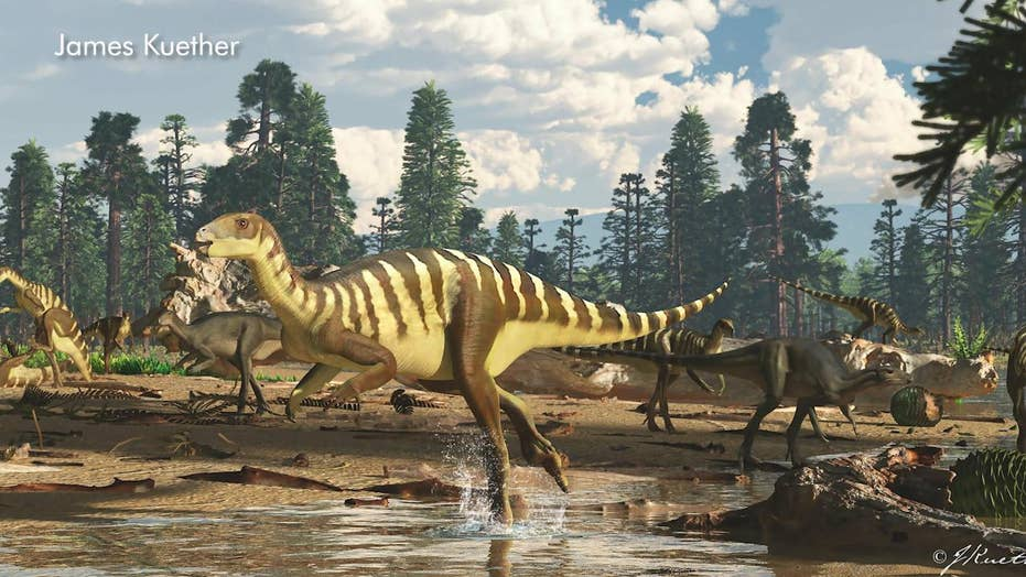 Fossil of small dinosaur discovered in Australia