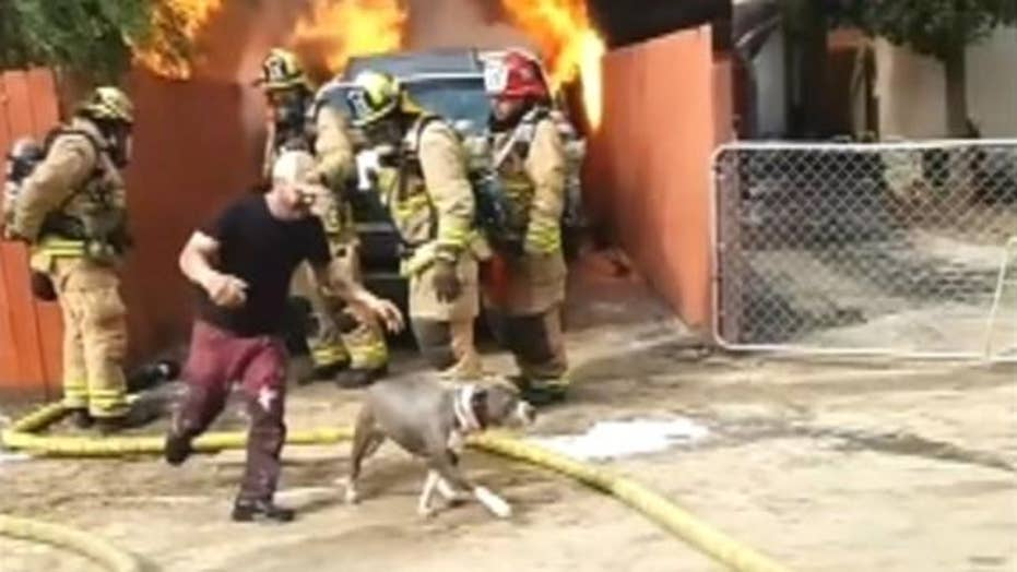 California man saves dog from burning house