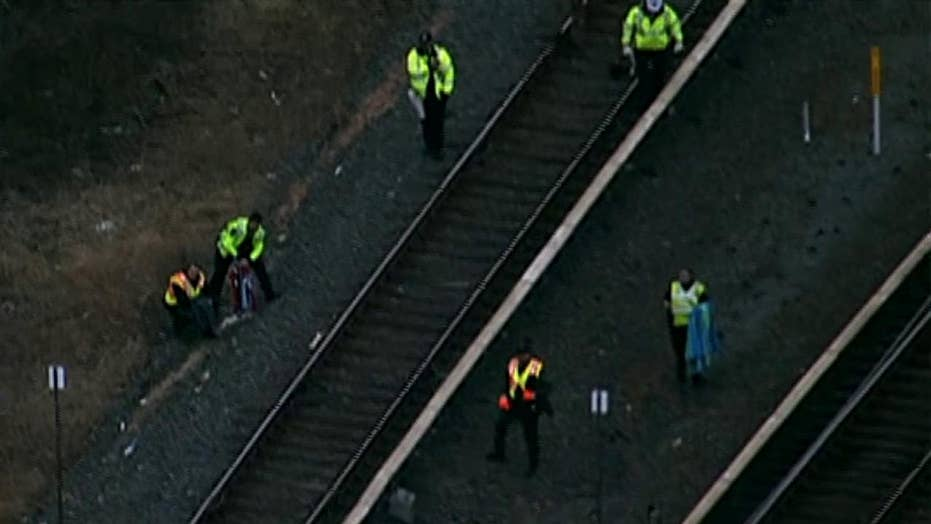 Raw video: Rescuers save injured bald eagle on Maryland train track