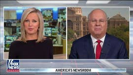 Karl Rove: Dems facing their own 'Tea Party' revolution