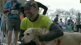 Blind man reportedly first to run New York City Half marathon with team of guide dogs