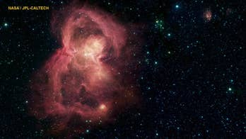 NASA finds 'butterfly' in space